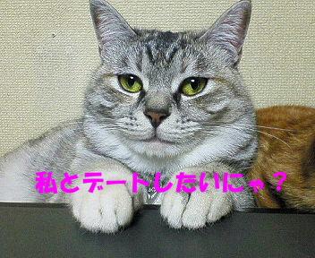 画像2007_0128(003)�B.JPG